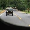 Jeep run_0022.jpg